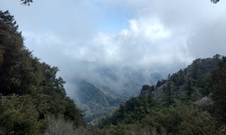 Hiking Mount Wilson Peak via Chantry Flat Trail
