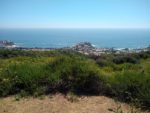 Crystal Cove State Park Hiking Trail Guide