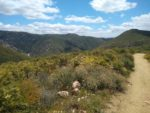 Hiking guide to Three Sister's Fall in San Diego, California.
