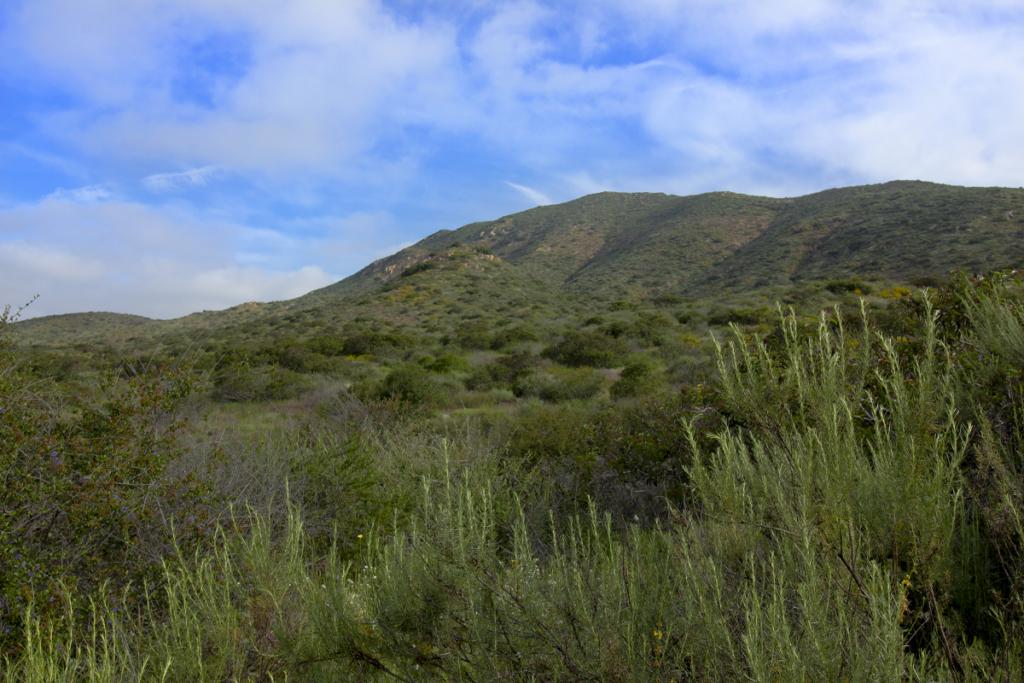 North Fortuna Peak in Mission Trails Regional Park from the Five Peak Challenge