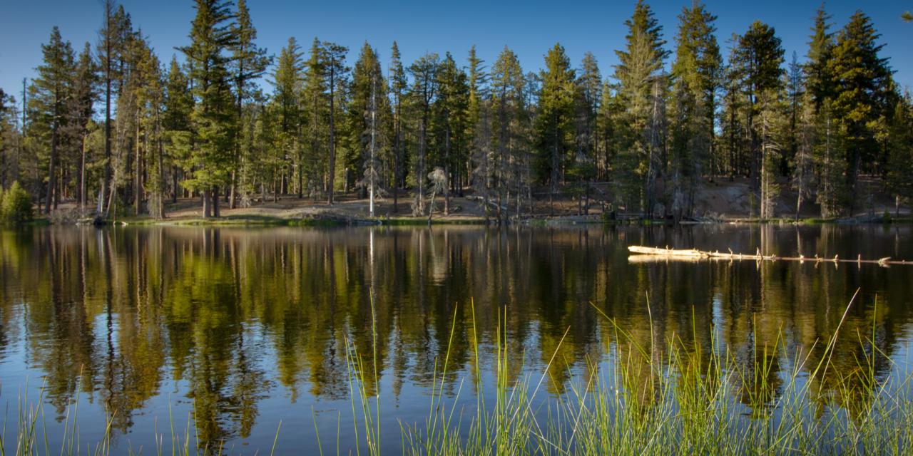 Reflection Lake Trail