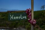 Honolua Bay Hiking Trail Guide