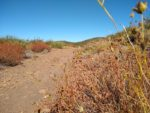 Garnet Peak hiking trail guide