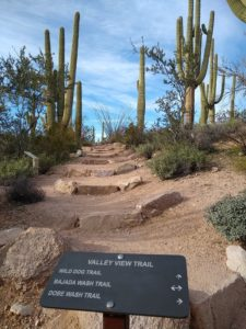 Valley View Overlook Trail Hiking Guide