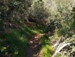 Black Mountain trail hiking guide, San Diego