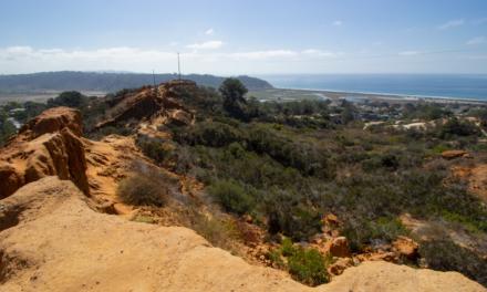 Red Ridge Trail