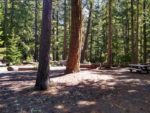 Clearwater Falls Hiking Trail Guide, Umpqua National Forest, Oregon