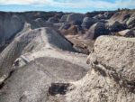 Blue Mesa Hiking Trail , Petrified Forest National Park, Arizona, Painted Desert