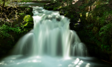 Whitehorse Falls – Umpqua National Forest