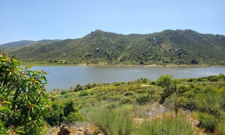 Lake Hodges High Trail