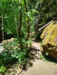 Fall Creek Falls Hiking Guide, Umpqua National Forest, Oregon