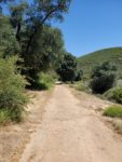 Oakzanita Peak Hiking Trail Guide, Cuyamaca Rancho State Park