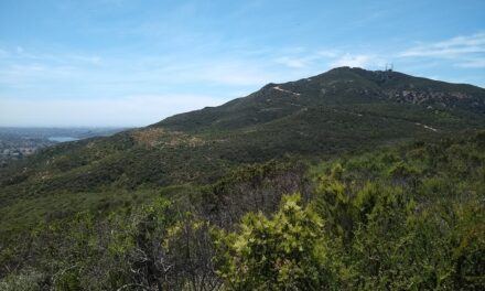 Cowles Mountain via Big Rock Park