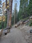 Four Mile Trail Hiking Guide, Yosemite National Park