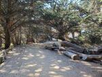Pfeiffer Beach Trail Hiking Guide