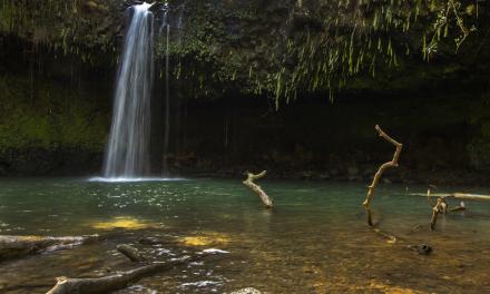 Twin Falls – Maui