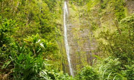 Pipiwai Trail and Waimoku Falls