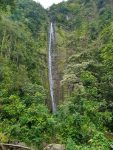 Pipiwai Trail and Waimoku Falls Hiking Trail Guide, Haleakala National Park, Kipahulu Districtq